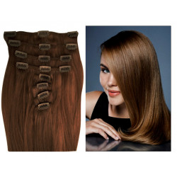 Extensions n 6 (chestnut) 100% natural hair  clip-in 55 cm
